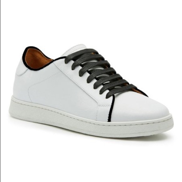 Brand New Frye Alexis Low Lace Sneakers